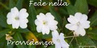 fede_provvidenza1.jpg